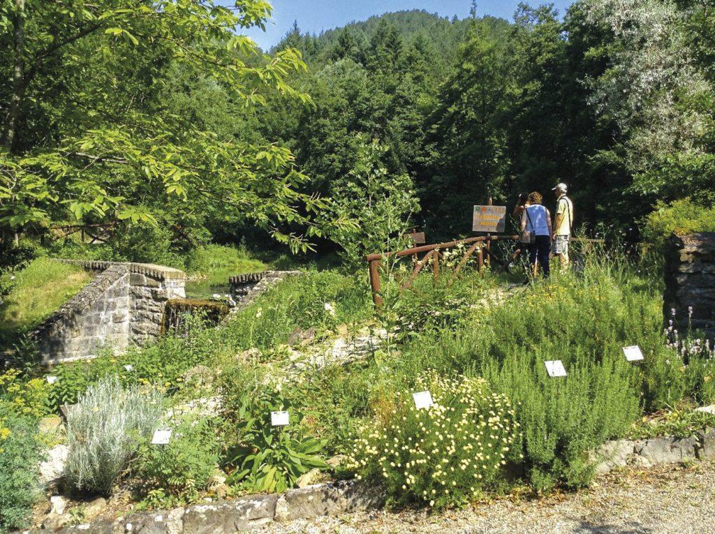 Giardino Botanico di Valbonella